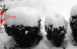 korbielów śnieg
