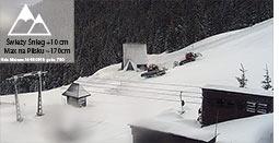 świeży śnieg pilsko