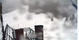 pilsko śnieg