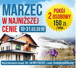 jontek oferta marzec 2019
