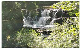 korbielów wodospad 28-07-2020